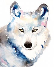 A watercolor painting of a wolf by Michelle Detering. The painting will be featured in the February issue of British Vogue.