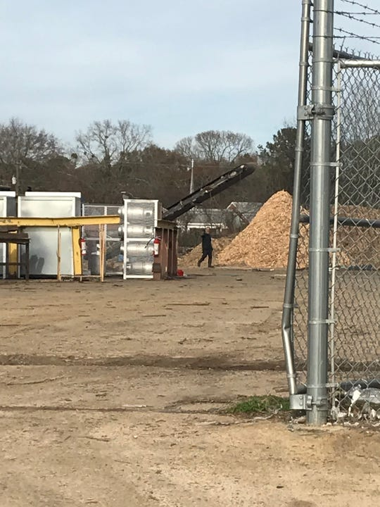 Wood chip piles at the Southeast Pallet and Box Company