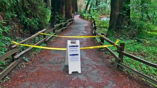 In this photo provided by CBS San Francisco shows a sign showing a trail closed sign at the entrance to the Muir Woods National Monument in Marin County, Calif. Authorities say a Redwood tree fell and fatally struck a man visiting Muir Woods National Monument Park on Christmas Eve, Dec. 24, 2019.