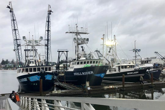 In this Dec. 11, 2019 photo, trawlers that fish for groundfish off the Oregon and Washington coast are shown in the background as a fisherman walks up a ramp from the docks in Warrenton, Oregon.
