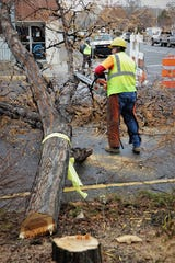 A city worker slices the branches off a downed tree at the corner of West Main Street and Allen Avenue Dec. 27, 2019, in preparation for the beginning of construction on the Complete Streets project.