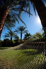 A hammock is suspended between two palm trees at the Parker Palm Springs on Monday, September 29, 2014.