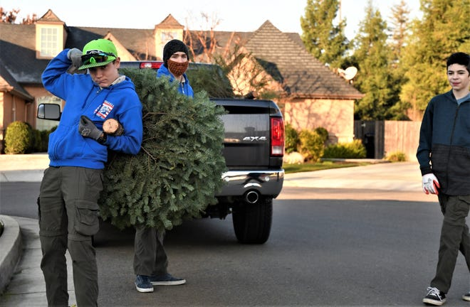 Visalia's Boy Scout Troop 317 will help you get rid of your dead, drytree on Saturday, January 4, 2020.