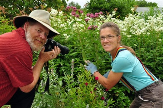 Professional gardener Janet Macunovich works in the garden while and her husband Steven Nikkila snaps a photo. Macunovich will speak to the Troy Garden Club on Wednesday.