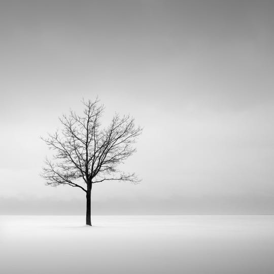 """""""Solitude,"""" in the DIA's """"Michigan's Great Lakes,"""" highlights the broad range of gray tones Jeff Gaydash is able to capture in his prints."""