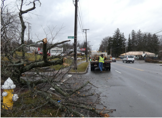 City of Mansfield employee Earnest Putnam clears branches from a downed tree on Park Avenue West and Shady Lane on Monday. High winds caused branches to fall on power lines and trees to fall in north central Ohio.