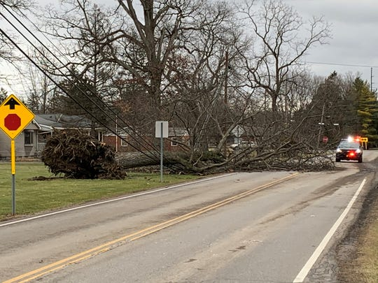 A fallen tree rests on utility lines and blocks part of Barks Road East near the intersection with Richland Road (State Route 529) on the southeast side of Marion. The tree was uprooted by high winds that whipped through the region late Sunday night and early Monday. Many residents were left without electricity due to the heavy winds.