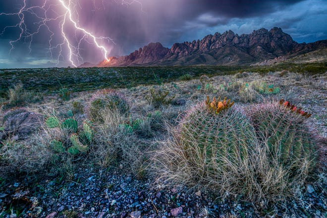 """As the saying goes, """"a picture paints a thousand words,"""" and this year's BLM photo contest winner captured an image that represents the beauty and grandeur of southern New Mexico's public lands."""