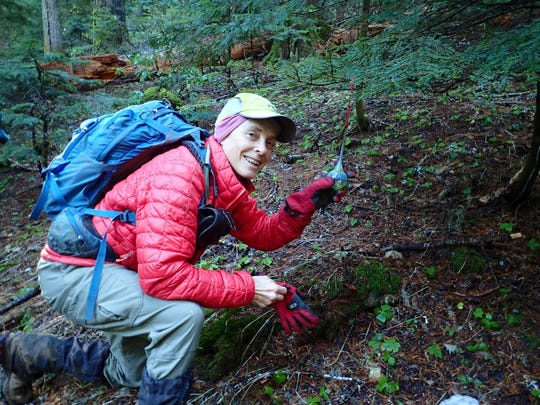 Bath Dayton of Salem finds one of the hidden glass Christmas tree ornaments in Willamette National Forest.