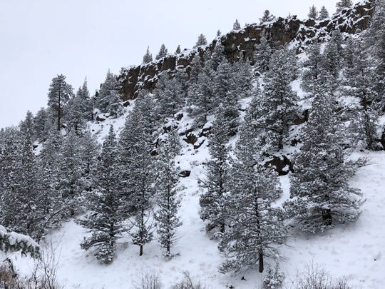 Snow-covered rimrock along the Deschutes  River Trail.