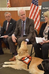 Sen. John Cornyn (R-TX) meets March 29 with certified facility dog handlers from various District Attorneys' offices, representatives from victims' support groups and local special court judges at the South Texas College of Law in Houston. The Courthouse Dogs Act passed the U.S. Senate in December.