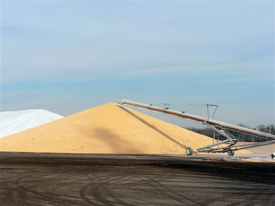 Some piled corn will go to the ethanol plant in January.