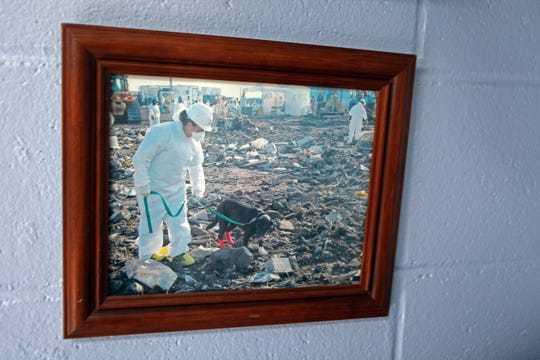 A picture on the wall of the Stewart County Animal Clinic shows Dr. Rita Tinsley at the 9/11 site in New York City searching for human remains.