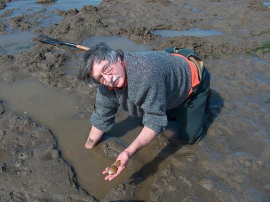 Clamming on Siletz Bay, closest to Salem just south of Lincoln City, is so easy that even a retired outdoor columnist can do it.