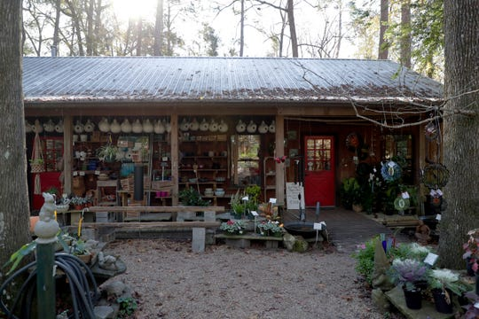 Native Nurseries, located on Centerville Road, has been in business for 40 years. Wildflowers, native trees, and herbs are among the variety of plants available for purchase.