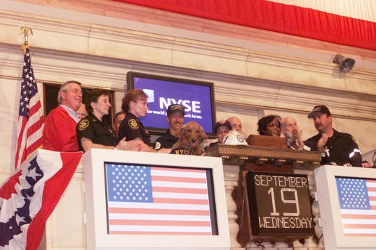 On Sept. 19, 2001, Dusty, a search and rescue dog that responded to the World Trade Center 9/11 rescue efforts, rang the bell at the New York Stock Exchange.