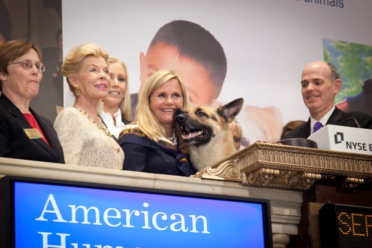 American Humane Association brought its national spokesdog, RIN TIN TIN, to New York City in 2011 to ring the closing bell at the New York Stock Exchange.