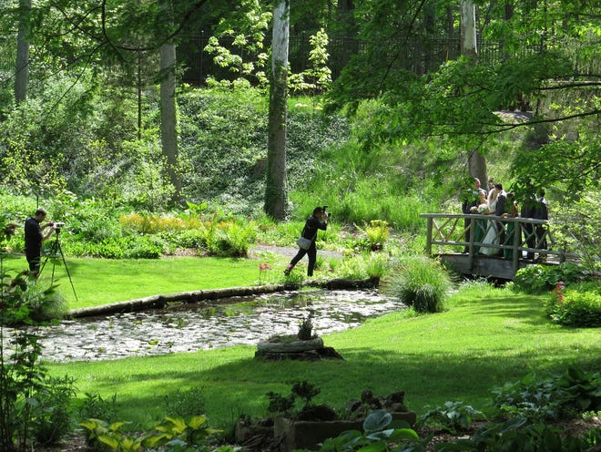 Wedding photography at Leonard J. Busk Garden in Far Hills.