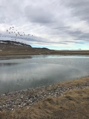 Cascade's sewer lagoons are now sited on the northeast edge of town. Thirty years ago they were on an island in the middle of the Missouri River