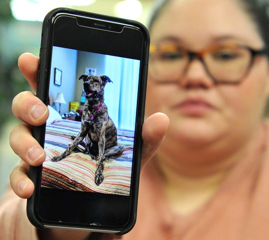 Gabriella Alvarez shows a photo of her missing dog named Bailee. Gabriela said Bailee is a certified emotional support dog that has helped her cope with her PTSD.