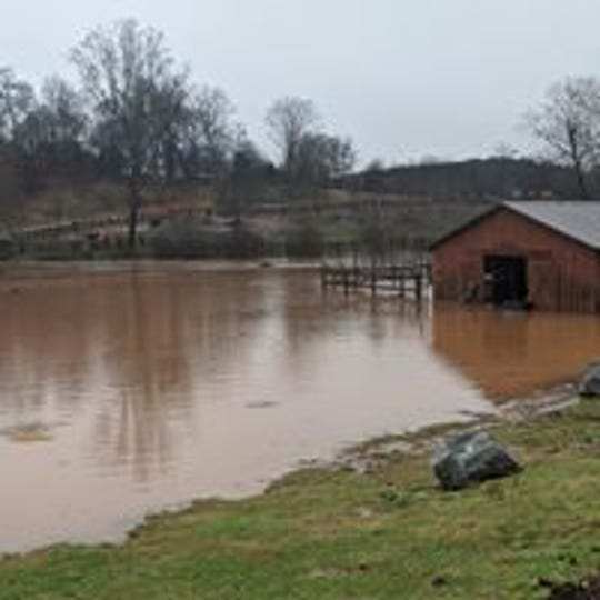 Water from a flooded creek spread Friday across Izzie's Pond, an animal rescue sanctuary in Pickens County.
