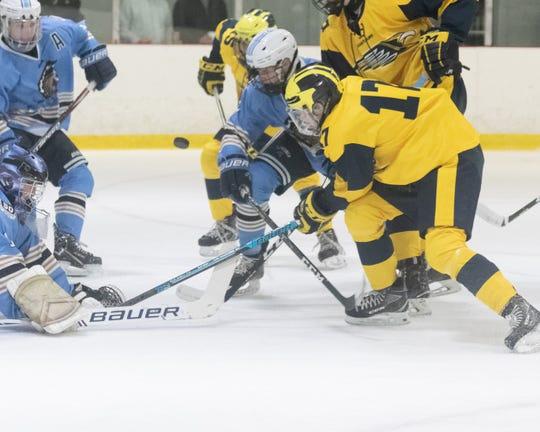 Hartland's Andrew Larson (17) battles for the puck in front of Livonia Stevenson goalie Brenden Stroble on Saturday, Jan. 4, 2020.