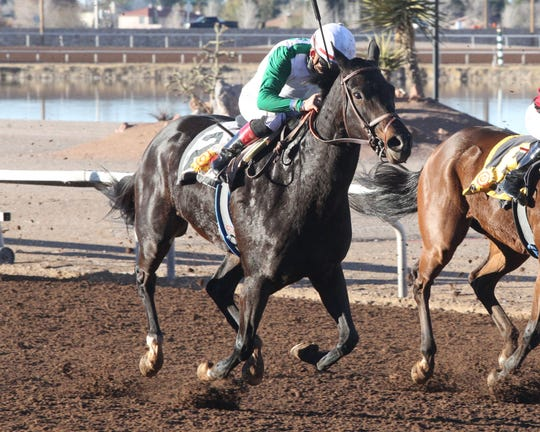 Tee Em Eye wins the Bold Ego Handicap on Saturday at Sunland Park Racetrack & Casino.