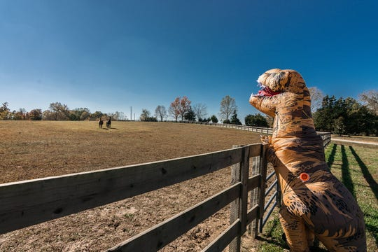 Why was a Tyrannosaurus rex spotted at 1605 East AB Wade Road in Portland? It was part of a creative marketing strategy by Realtor Michelle Patterson and her team at Re/Max Choice Properties.