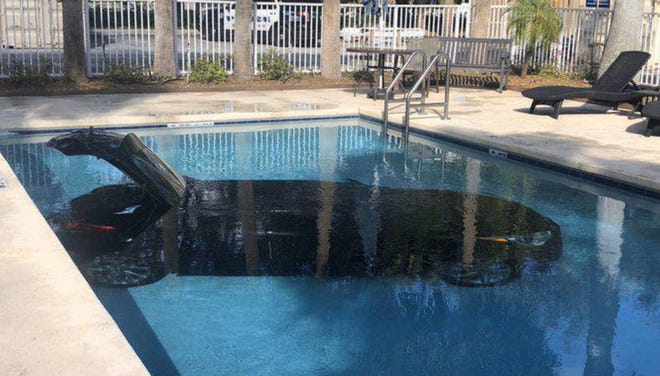 A car crashed into a hotel pool in West Palm Beach, Florida, as a driver was backing his vehicle, West Palm Beach police said.