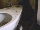 A June 2019 Mississippi Health Department inspection at the Mississippi State Penitentiary at Parchman shows a hole behind a toilet that doesn't function.