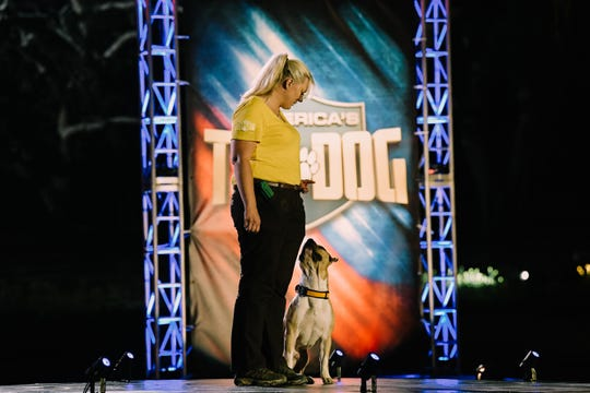 """Kristi Kummer, co-owner ofYou and Your Dog Canine Behavioral Health and Training in Oconomowoc, will appear on A&E's new show """"America's Top Dog."""""""
