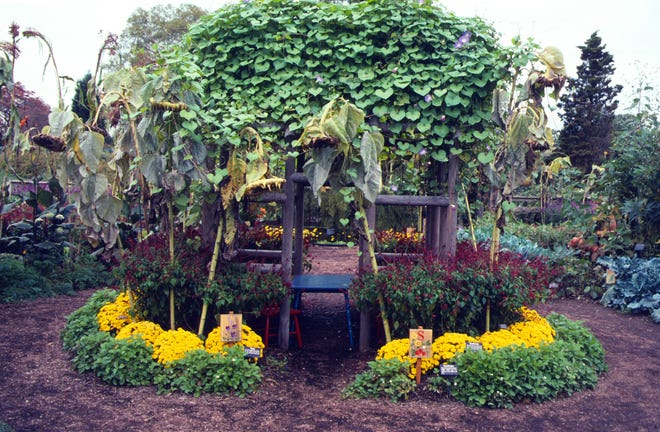 The ability to grow from seed is evidenced in this kids' fort garden that cost just pennies each year to replant.