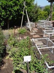 Growing plants can be done anywhere and rabbit problems are easily solved without technology.