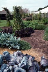 True gardening is done on open ground where crops can be rotated annually.