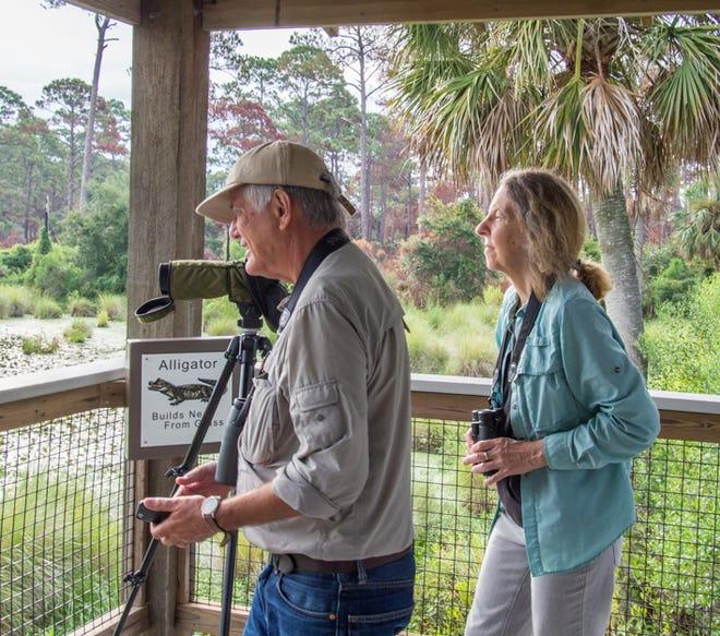 Don and Ann Morrow birding at St Marks NWR.