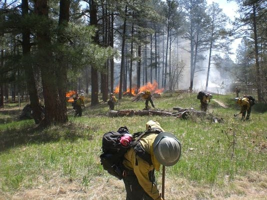Officials with the Lincoln National Forest said planned fires may start as soon as Wednesday, Jan. 8, 2020, and be conducted through the rest of winter.