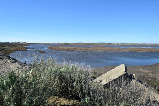 Water from recent rains fills the lagoon at Ormond Beach near the end of Arnold Road in Oxnard on Monday. The area is a nesting ground for several species of protected birds during spring and summer and is a  popular stop for migratory birds year-round.