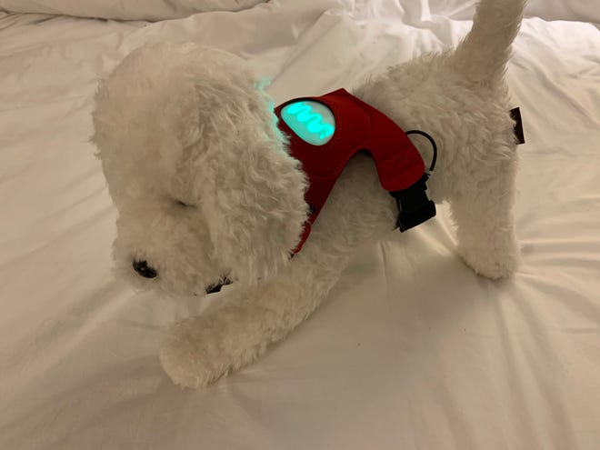 Inupathy's smart dog harness detects your dogs' emotional state.