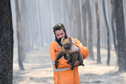 Adelaide wildlife rescuer Simon Adamczyk holds a koala he rescued at a burning forest near Cape Borda on Kangaroo Island, Australia on Jan. 7, 2020.