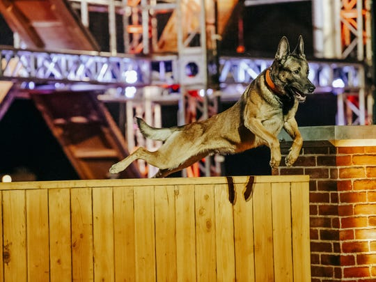 """A competitor leaps over a fence on """"America's Top Dog."""""""