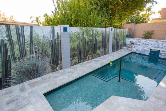 Dianne Cohen used photos of the Desert Botanical Gardens for her backyard murals.