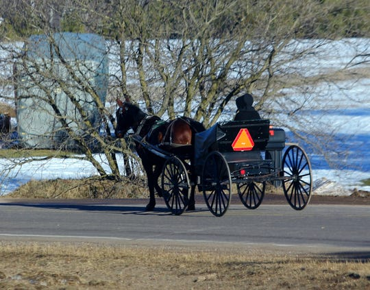 Town lawmakers have testified that large cleats on horse shoes used to pull buggies, wagons and other farm implements cause damage to rural roads - especially newly paved roads.