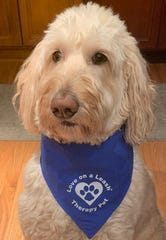 Charlie the goldendoodle is another member of BARK-9.