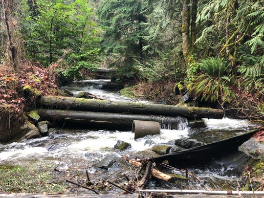 Debris of logs, installed decades ago as a way to help fish climb upstream on Dickerson Creek, has become scattered since flooding events. A county project this summer will remove the debris and help naturalize the creek.