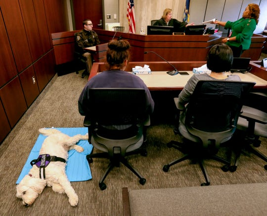 Izzy rests on the floor next to Marley, a juvenile, as Marley sits in front of attorney referee Karen Transit at the Macomb County Juvenile Court in downtown Mt. Clemens on Thursday, December 29, 2019. Izzy, a comfort dog, is often seen in juvenile court hearings as a stress relief for kids facing attorney referees in various kinds of proceedings.