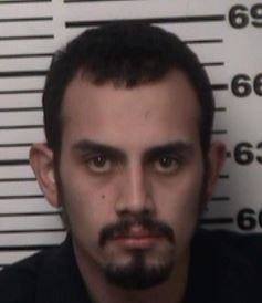 Stephen Losoya of Artesia is facing numerous charges after allegedly stealing a car and a gun Wednesday.