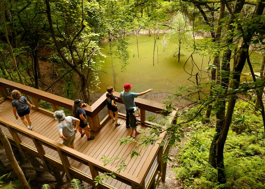 People stand on the new overlook above the basin of Devil's Millhopper on June 6, 2019, in Gainesville. After being closed for months because flooding damaged the boardwalk and stairs, the state park reopened with a new overlook at the sink and new railings.