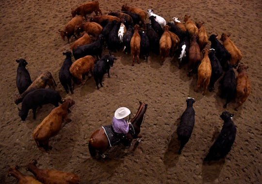 "A rider wades into the herd of cattle to ""cut"" one out of the group during Friday's Abilene Spectacular cutting at the Taylor County Expo Center."