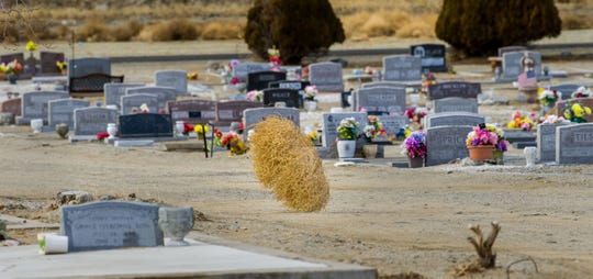 A tumbleweed blows across the Valley View Cemetery in Yerington.