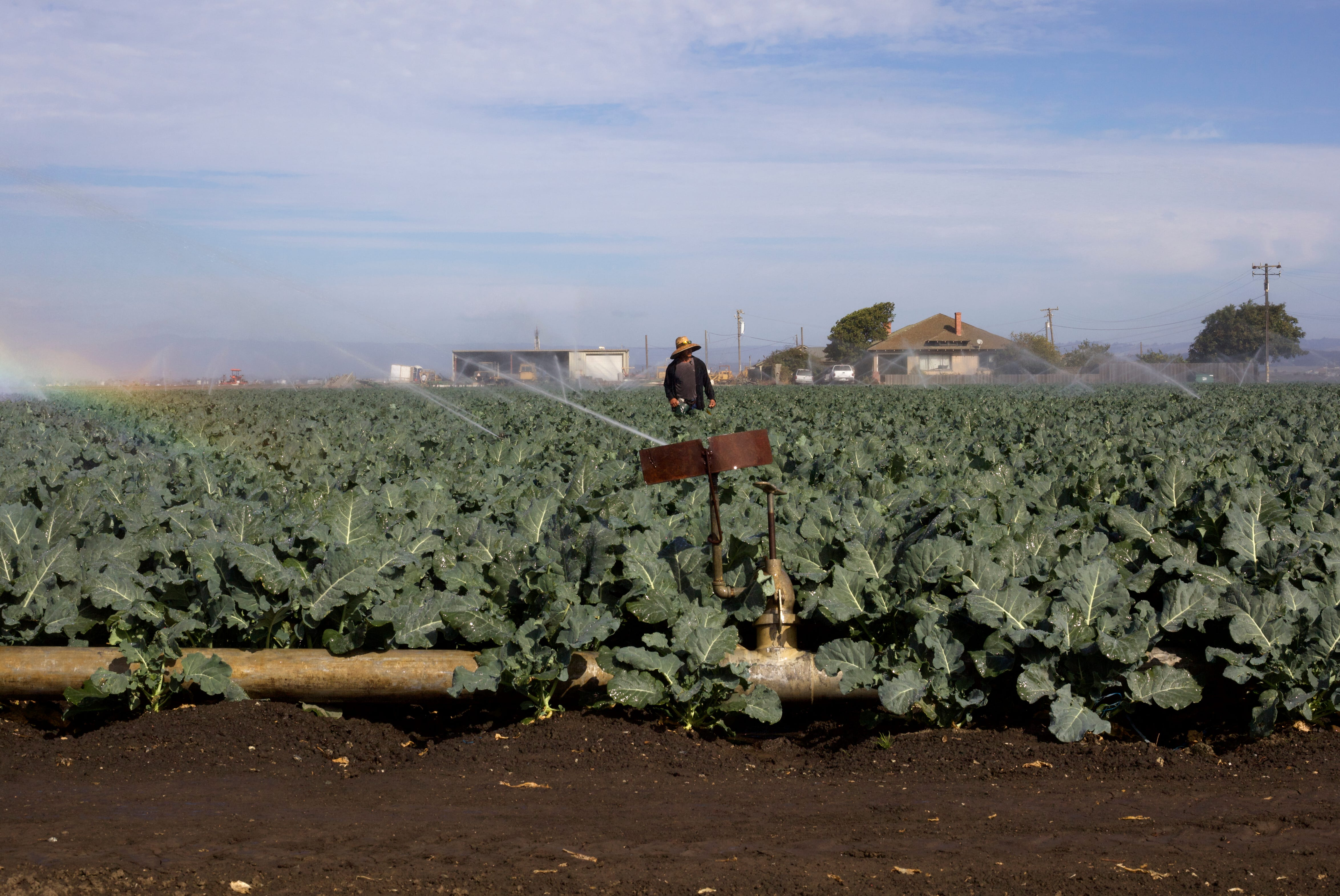 More than 90,000 farmworkers living in the Salinas and Pajaro Valley region earn an average of $17,500 a year. Yet, Salinas is one of the most expensive places to live in the U.S.